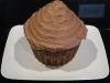 Custom Giant Cupcake