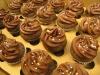 Double Chocolate Minis